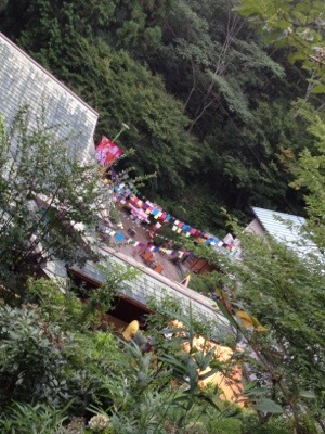 20120805-085727.jpg