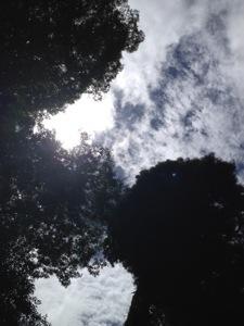 20120828-002226.jpg