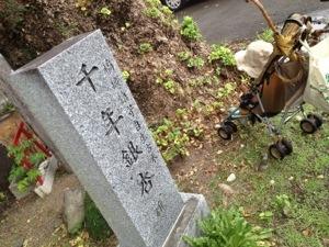 宮崎神宮∞Sernya∞虹☆・゜゚・*: .。.:*・゜゚・*