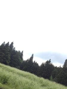 20120910-034319.jpg