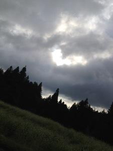 20120910-040534.jpg
