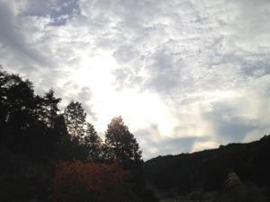 20121013-184050.jpg