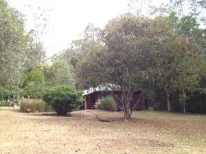 20121121-143225.jpg