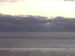 20121122-214324.jpg