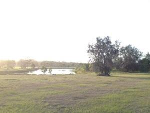 20121123-110244.jpg