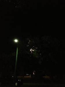 20121123-155732.jpg