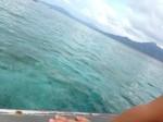 癒しの楽園∞マングローブの広がる美しい緑と青の世界∞*・゜゚・*Bunaken islandへ☆