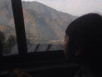 チトワン国立公園∞Chitman National park☆初めての野生のサイとの出会い∞Nepal∞*・゜゚・*☆